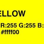 黄色い画像